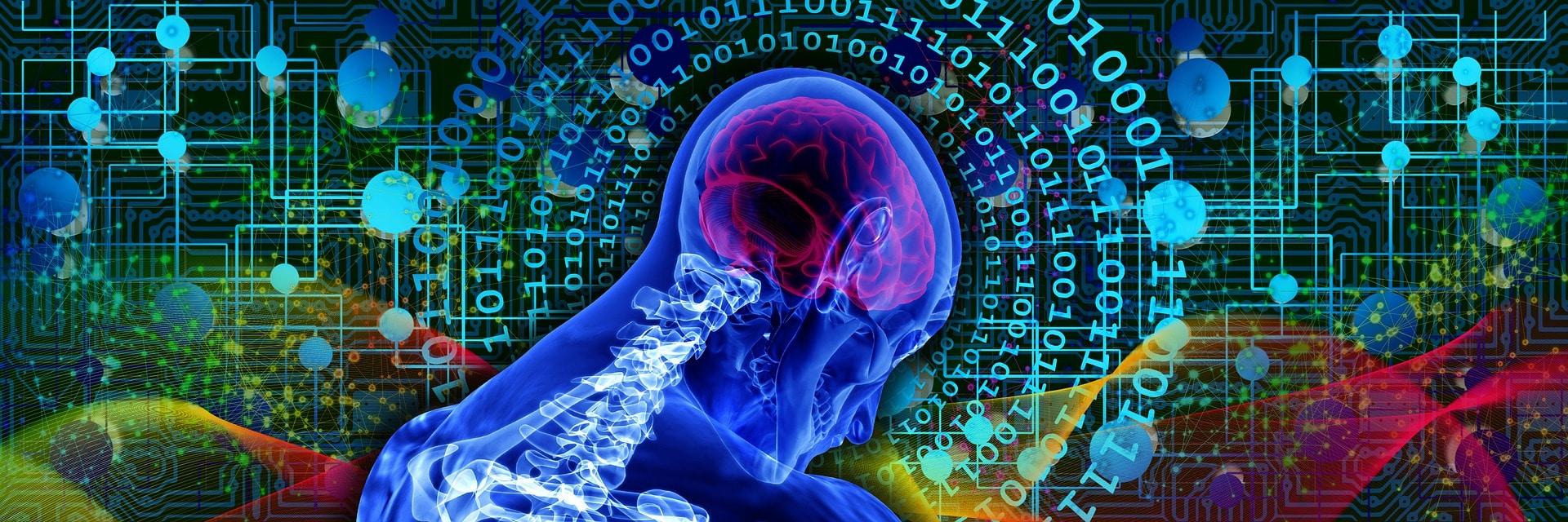 """Cervelli """"disconnessi"""": dalle droghe ai disturbi comportamentali. Le dipendenze sospendono la volontà e alterano i processi decisionali"""